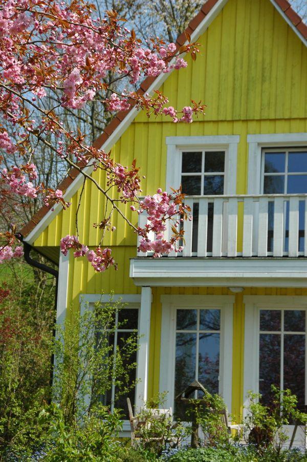 familienfreundliches Ferienhaus in Ostholstein im Frühling